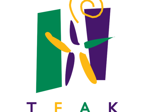 Spotlight on TEAK Fellowship