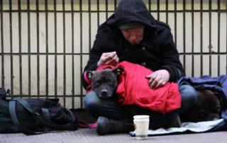 daniel-neiditch_homelessness-de-blasio