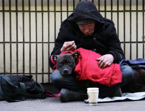 Will de Blasio's Plan End Homelessness in NYC?